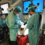 medical personnel practicing verious approaches to skull base neurosurgery